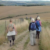 Descent from Bignor Hill