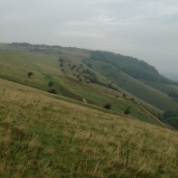 Looking westwards towards Ditchling Beacon