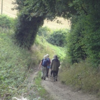 Start of the climb up to Bignor Hill from Littleton Farm