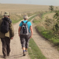 On the trail from Chanctonbury to Steyning Bowl and Upper Beeding